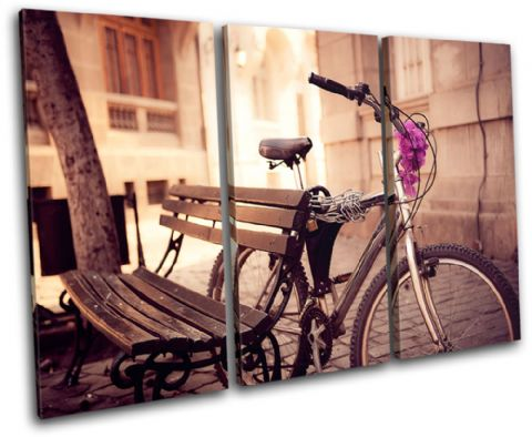 Urban Bicycle Vintage - 13-0504(00B)-TR32-LO